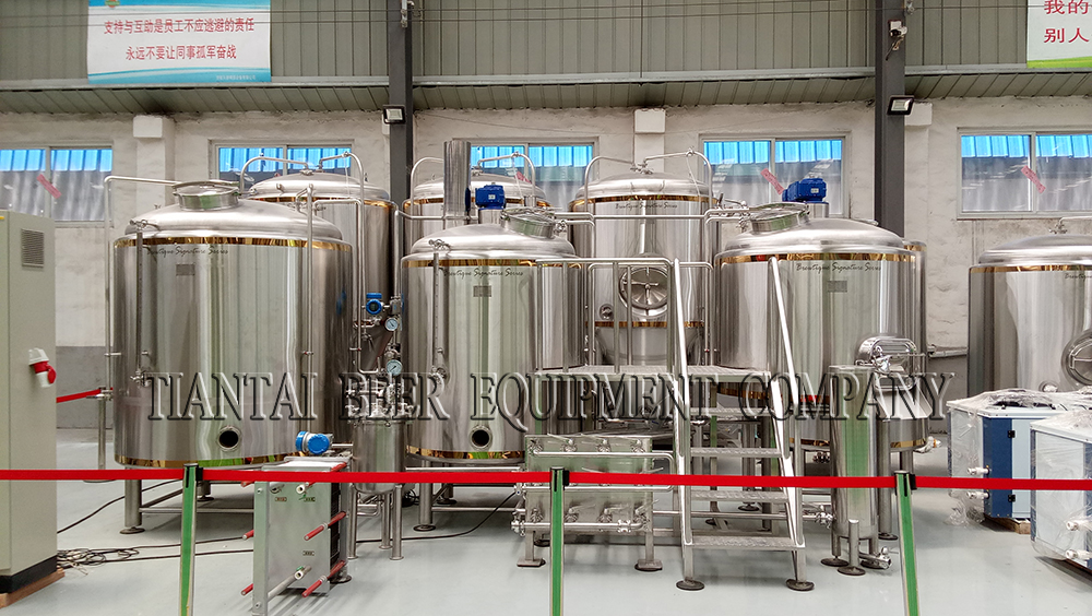<b>1000L Australia brewery system with copper belt</b>