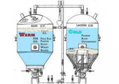 <b>Difference between Industry Beer and the Craft Beer on the fermentation process</b>